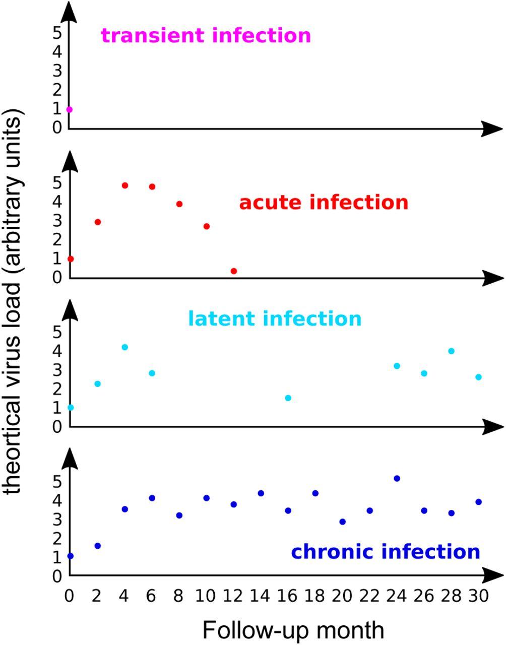 Why human papillomavirus acute infections matter   bioRxiv