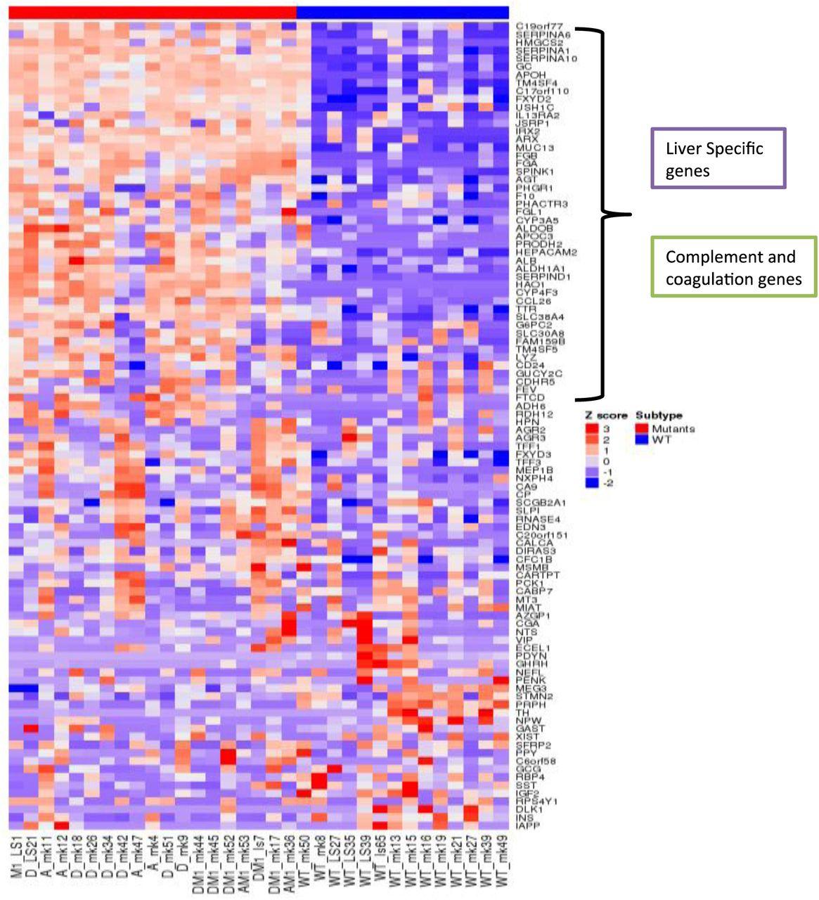 ATRX, DAXX or MEN1 mutant pancreatic neuroendocrine tumors are a