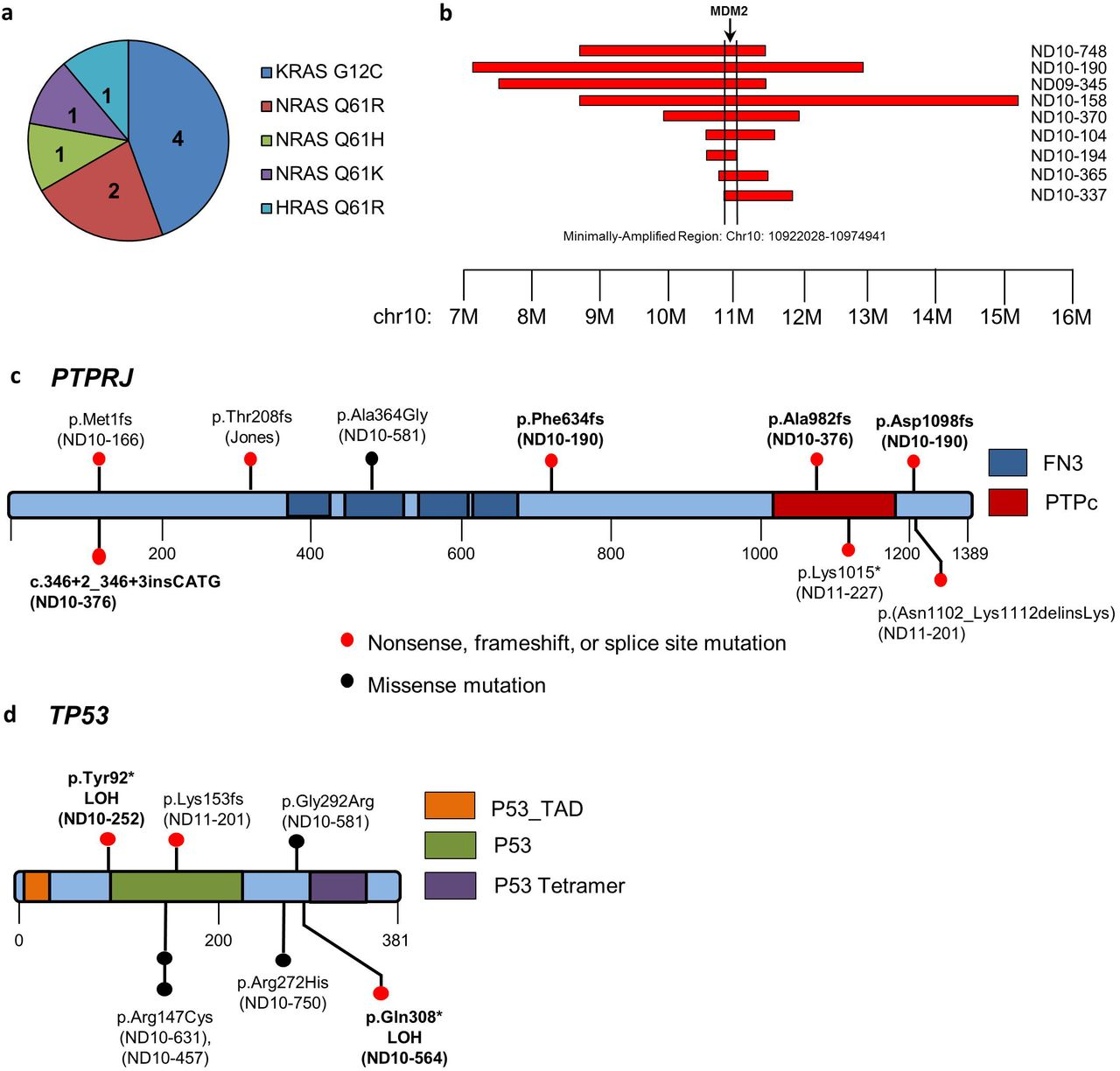 Somatic inactivating PTPRJ mutations and dysregulated pathways