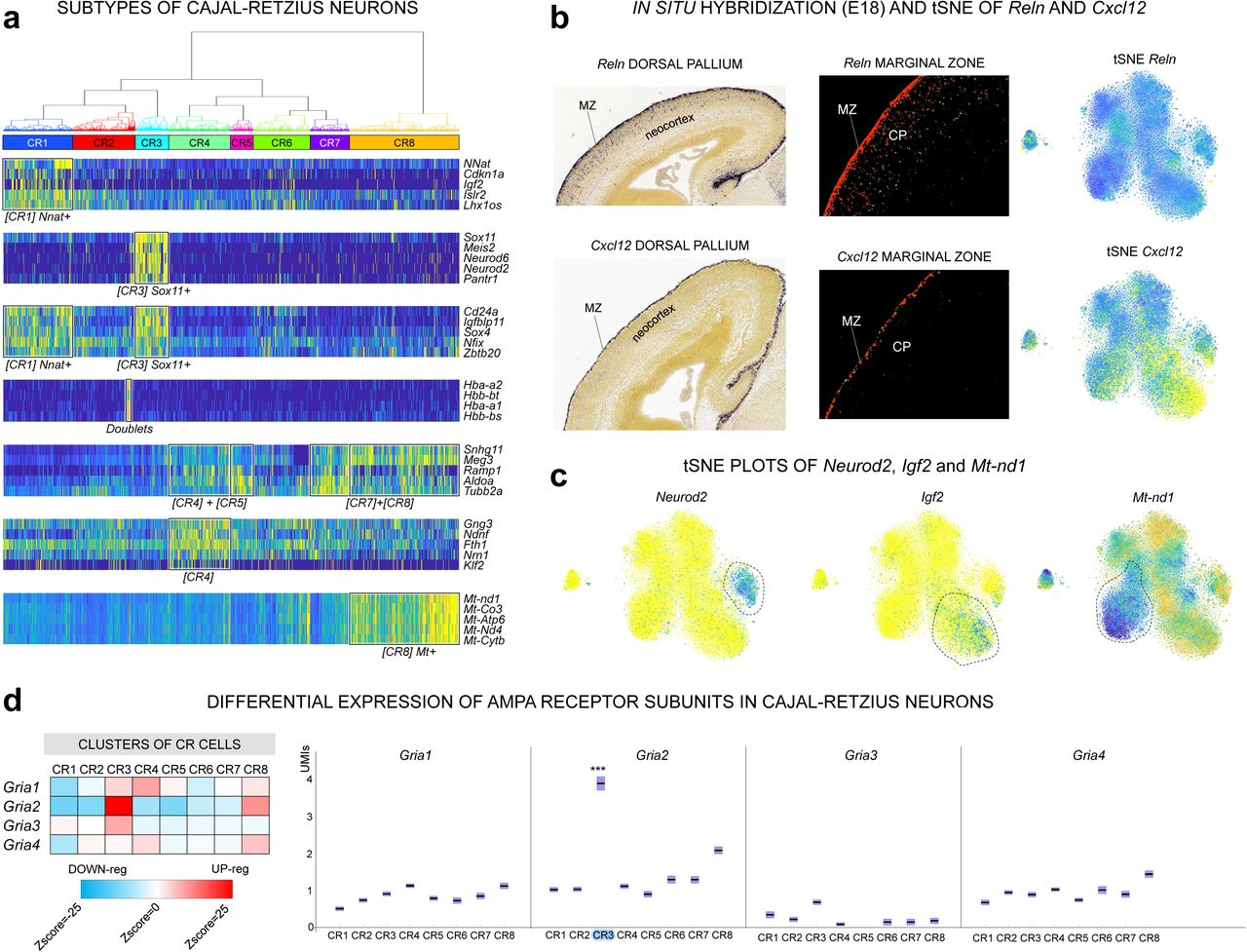 bigSCale: An Analytical Framework for Big-Scale Single-Cell Data