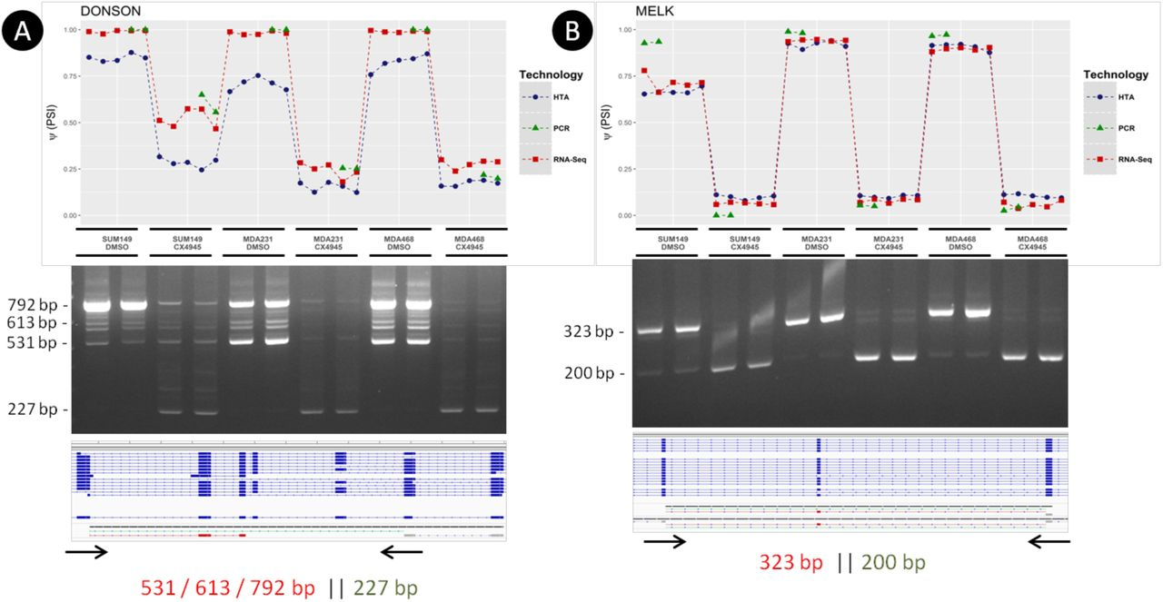 Comparison of RNA-seq and Microarray Platforms for Splice