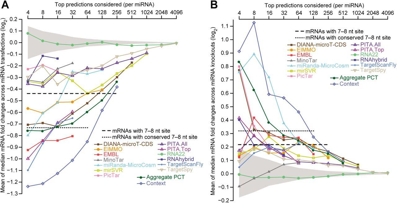 Predicting microRNA targeting efficacy in Drosophila | bioRxiv
