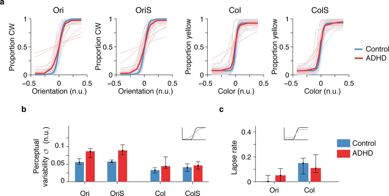A low-level perceptual correlate of behavioral and clinical