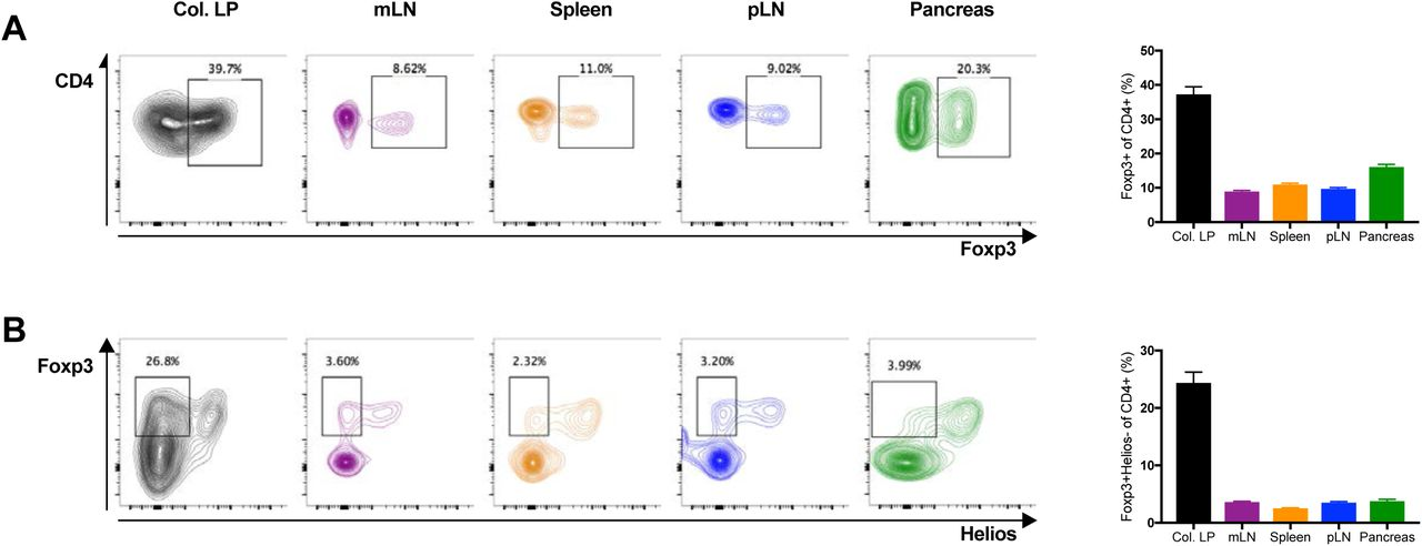 Peripherally-induced regulatory T cells contribute to the