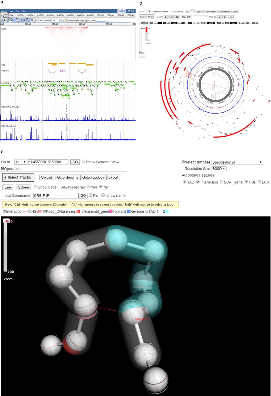 Delta integrates 3D physical structure with topology and genomic