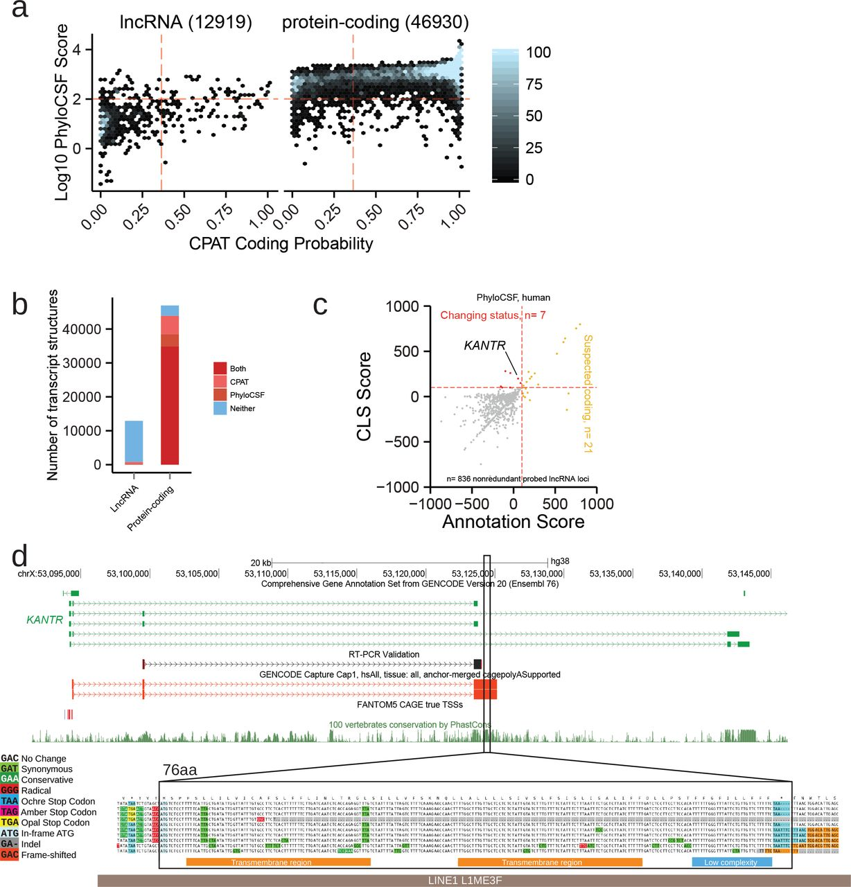 High-throughput annotation of full-length long noncoding RNAs with