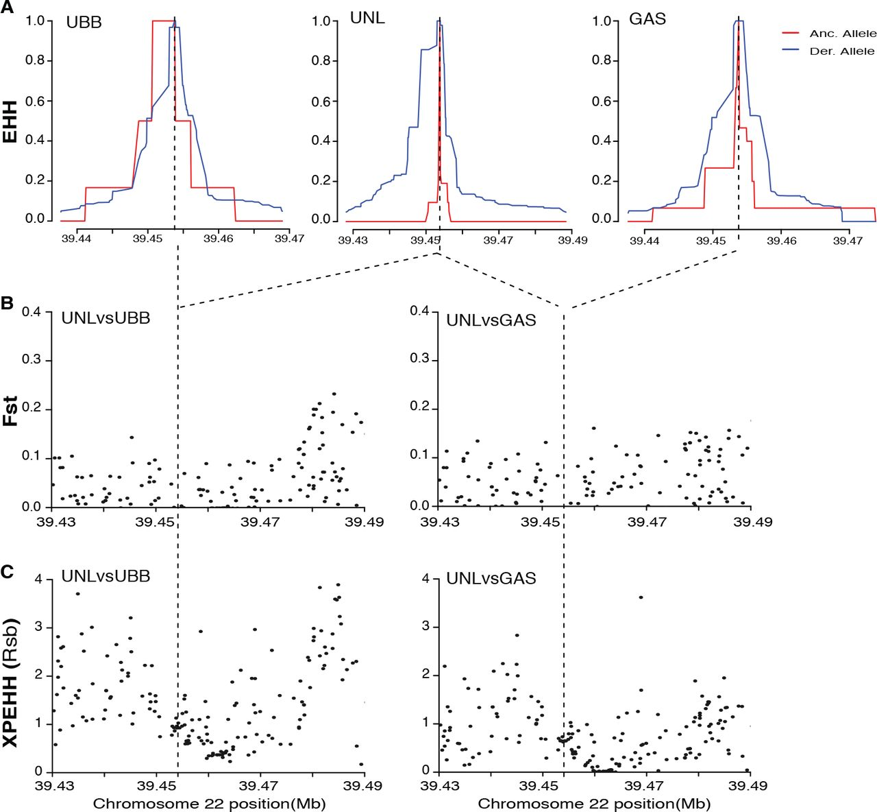 Evidence of population specific selection inferred from 289