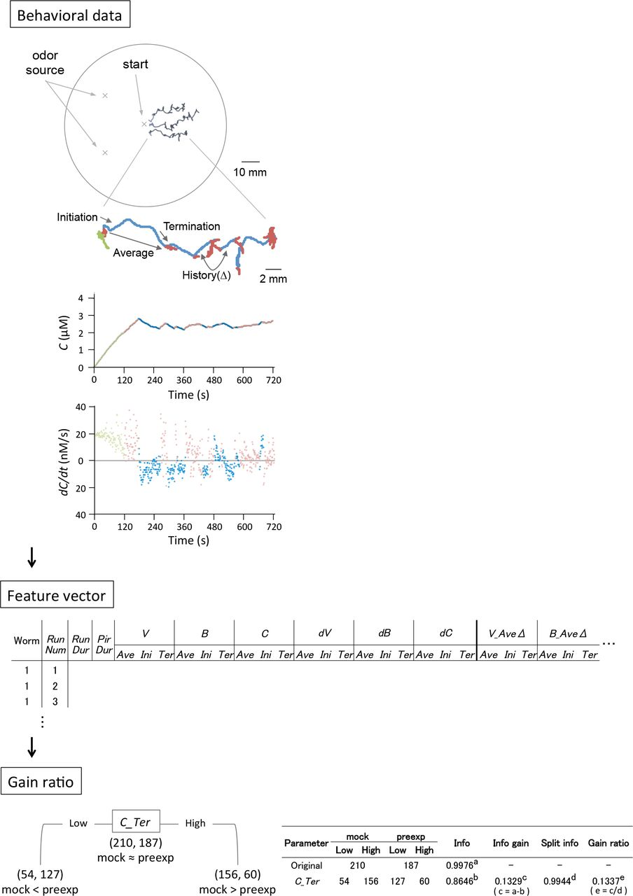 62d55ec1a030 Experience-dependent modulation of behavioral features in sensory ...
