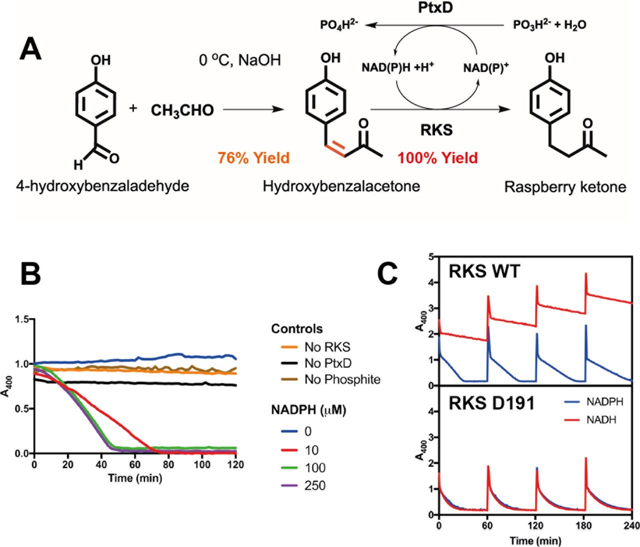 A cell-free synthetic biochemistry platform for raspberry