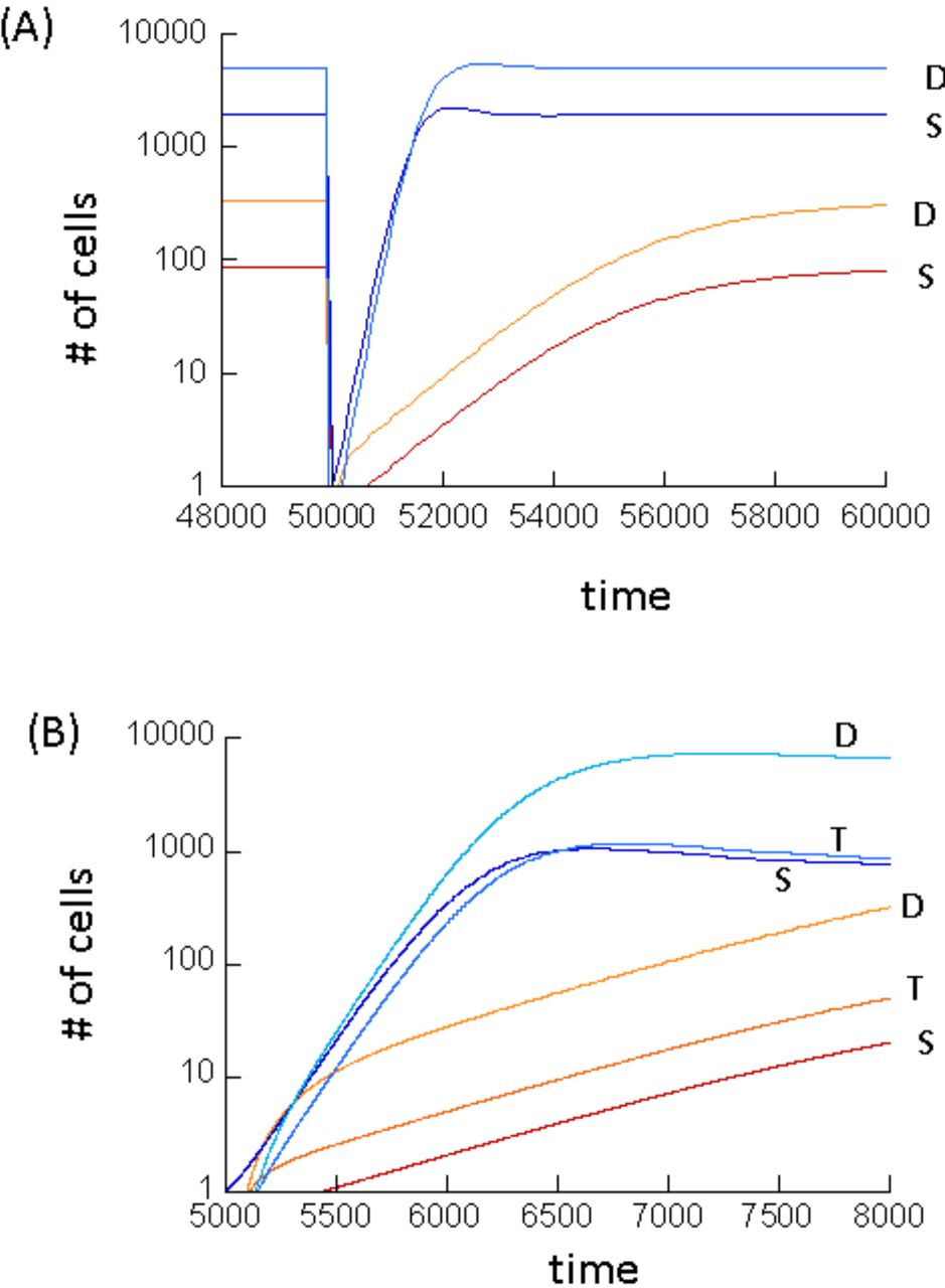Effect of cellular de-differentiation on the dynamics and