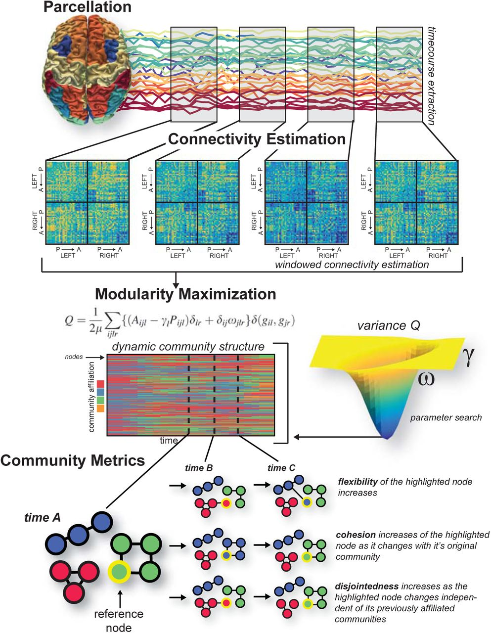Applications of community detection techniques to brain