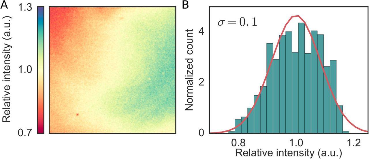 Blue light is a universal tactic signal for Escherichia coli | bioRxiv