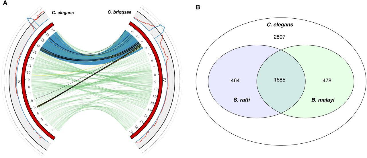 Discovery of unique loci that underlie nematode responses to