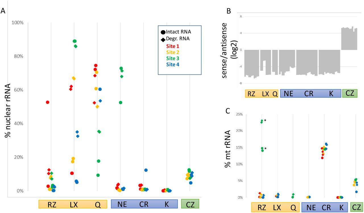 Cross-Site Comparison of Ribosomal Depletion Kits for Illumina