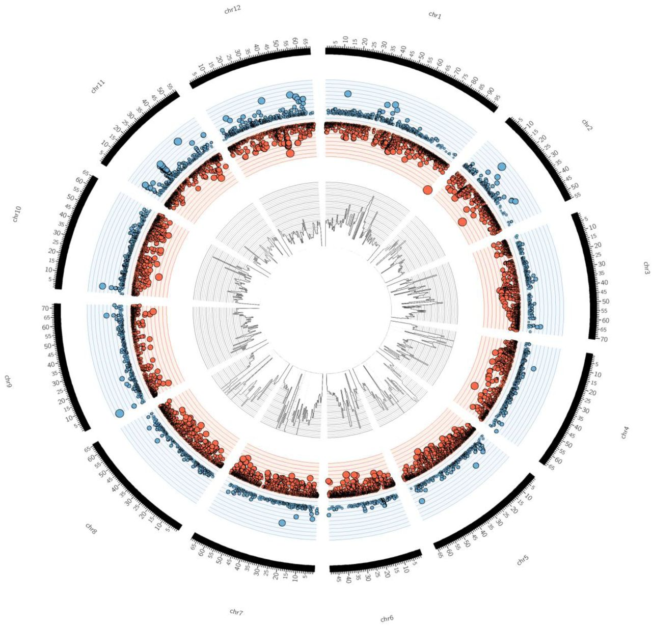 The genome sequence of the wild tomato Solanum pimpinellifolium