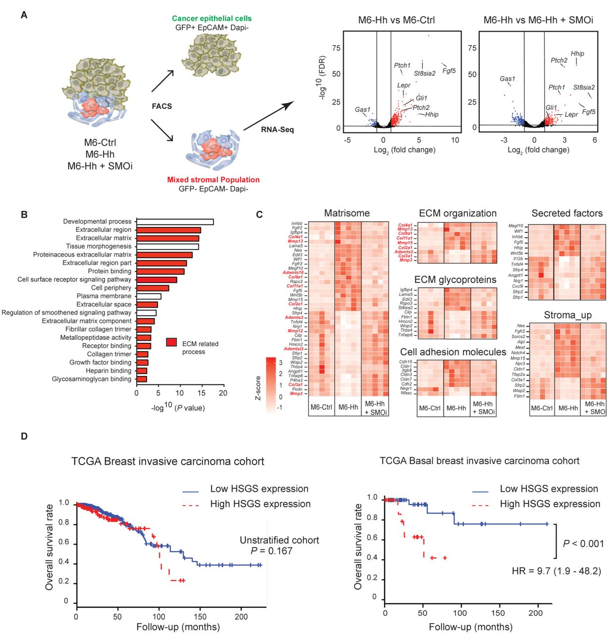 Targeting stromal remodeling and cancer stem cell plasticity to