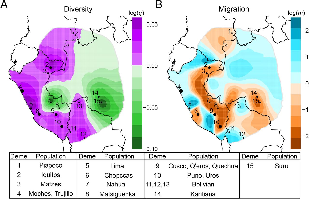 The Evolutionary Genomic Dynamics of Peruvians Before