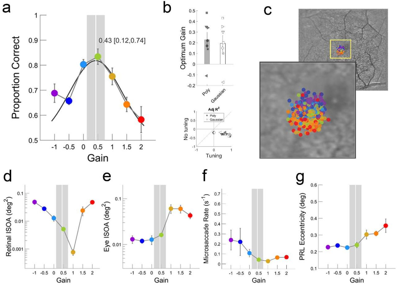 Suboptimal eye movements for seeing fine details | bioRxiv
