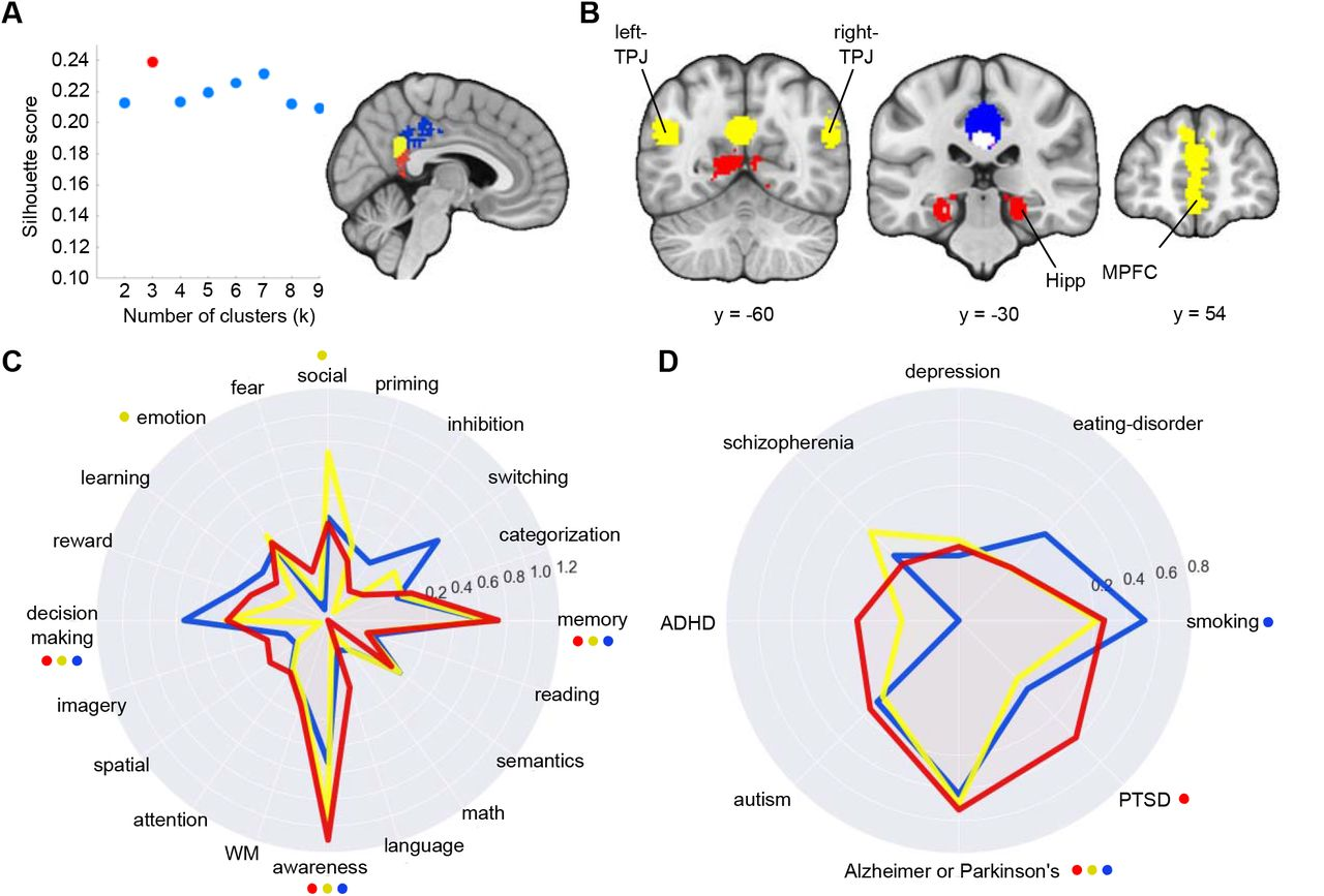 Functional Parcellation of the Default Mode Network: A Large