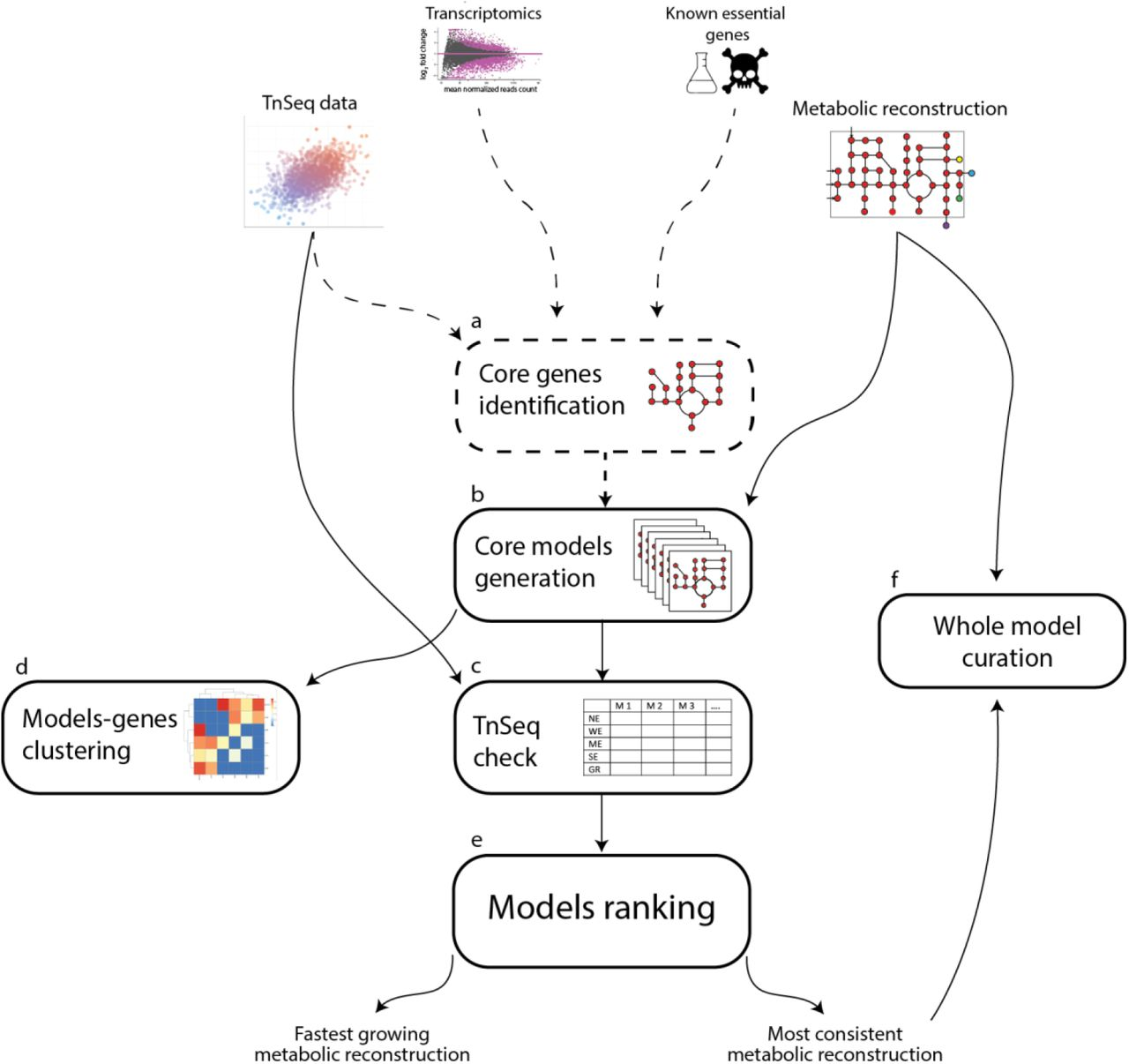 Tn-Core: context-specific reconstruction of core metabolic models