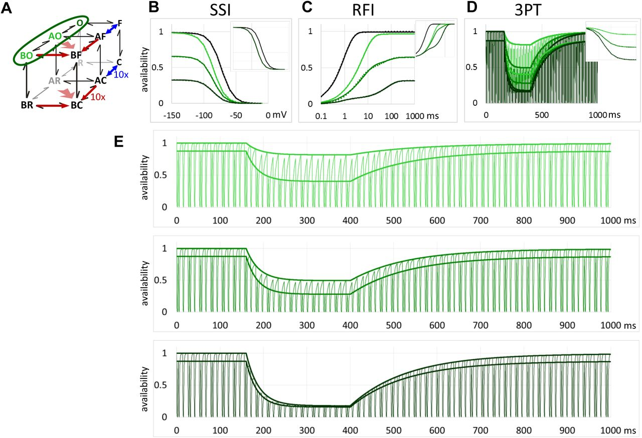 Non-blocking modulation as the major mechanism of sodium channel