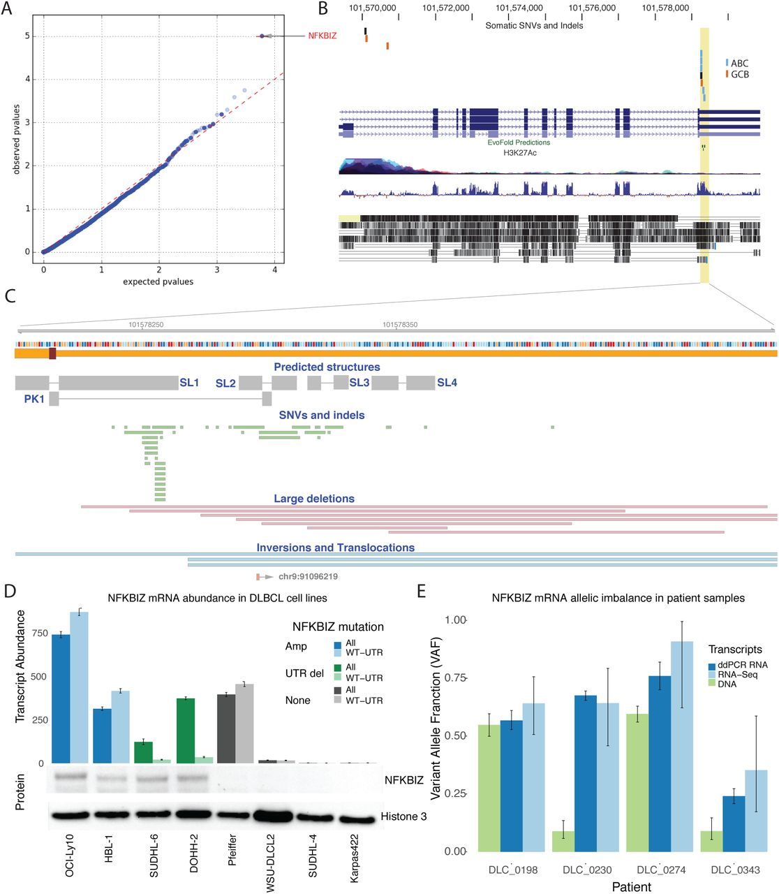 Genome-wide discovery of somatic coding and regulatory