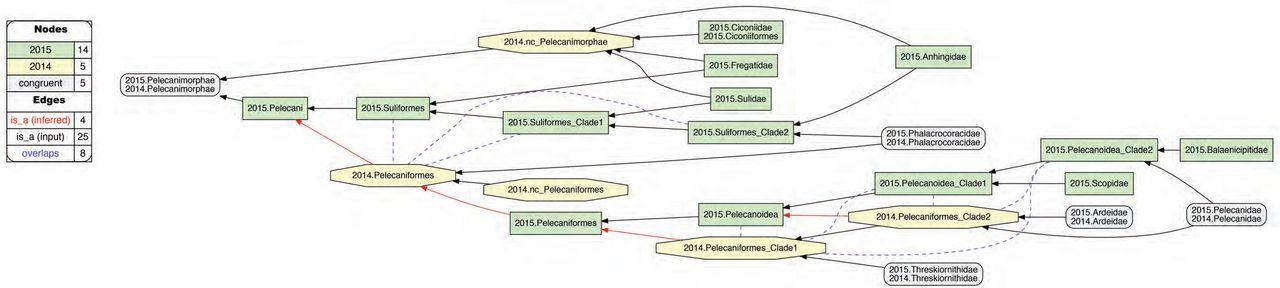Verbalizing phylogenomic conflict: Representation of node