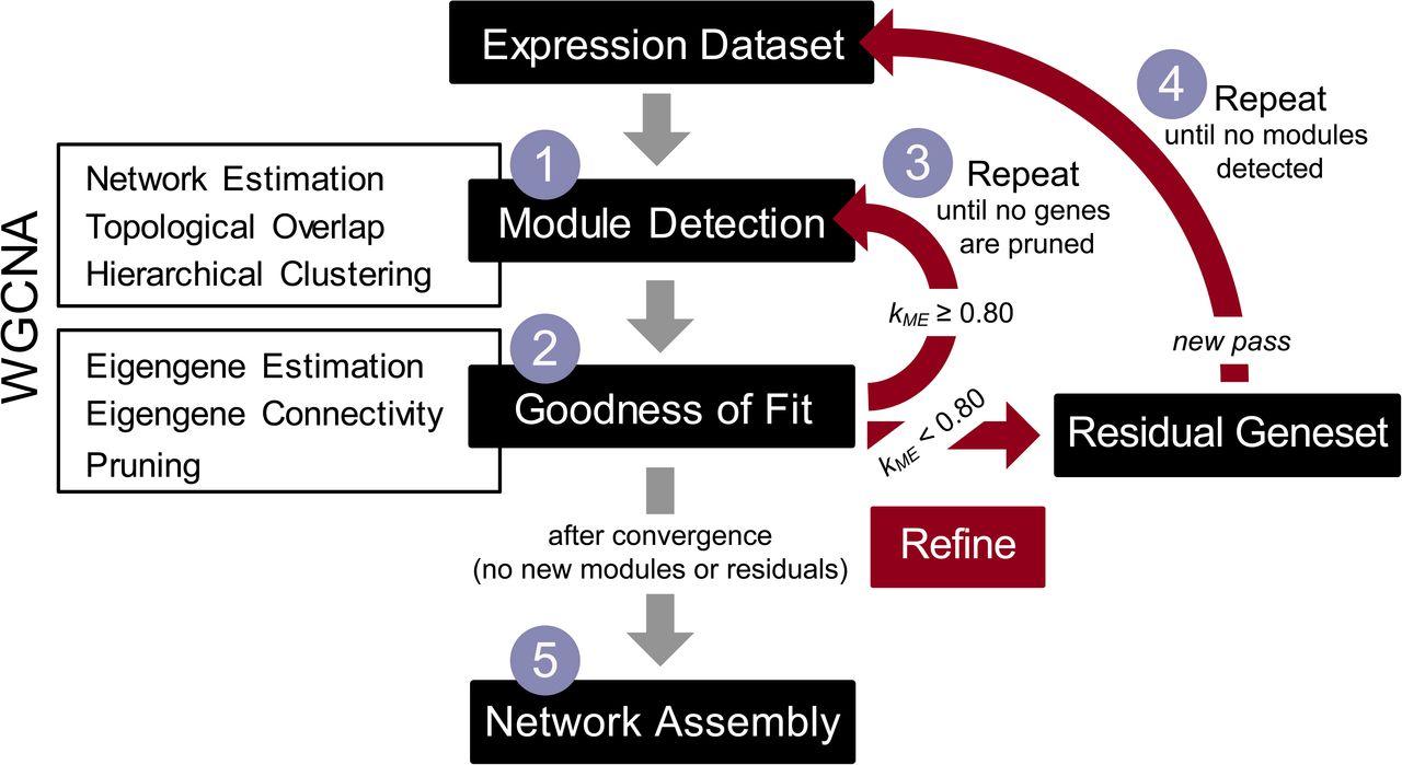 iterativeWGCNA: iterative refinement to improve module detection