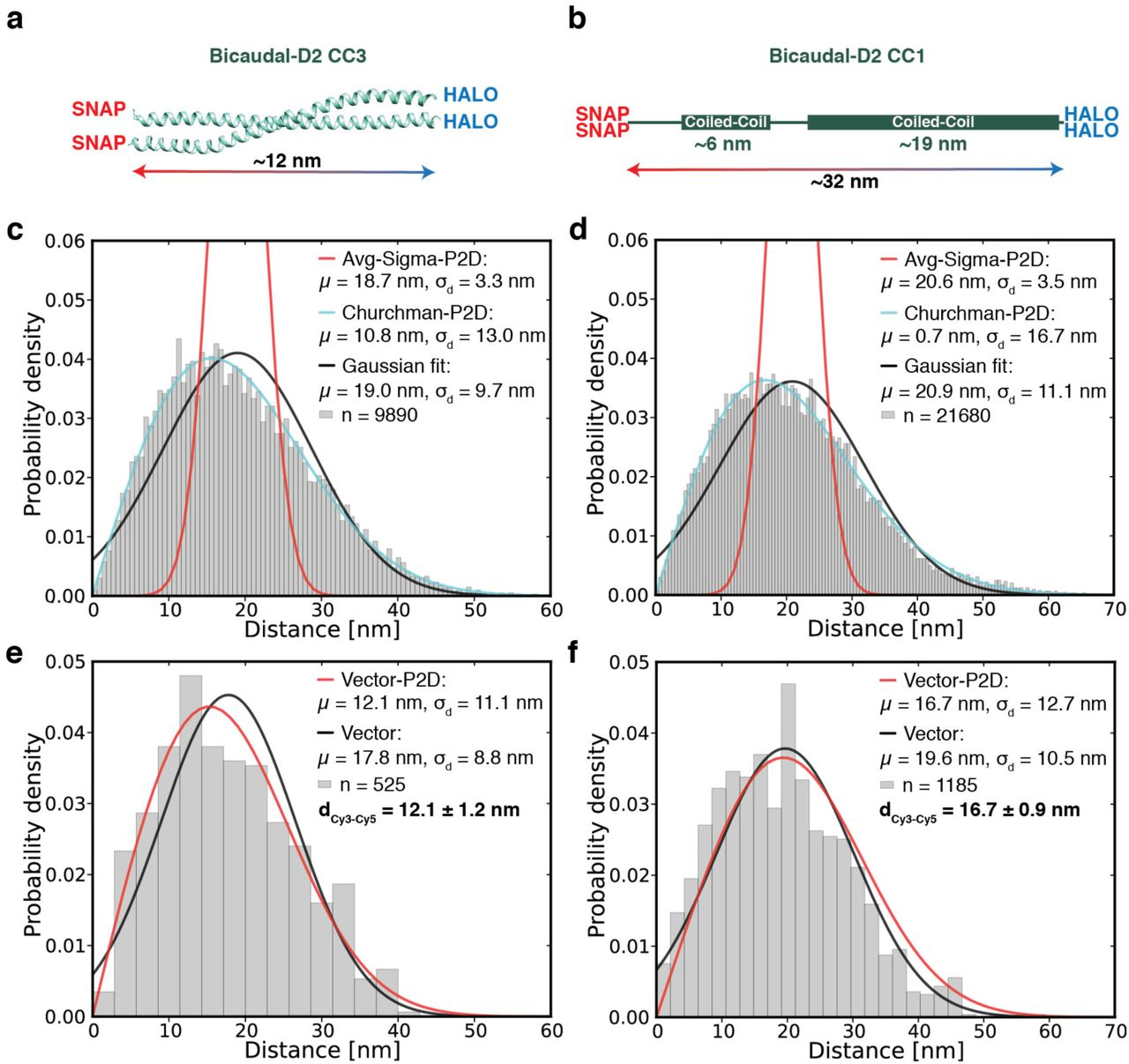 High accuracy measurements of nanometer-scale distances between