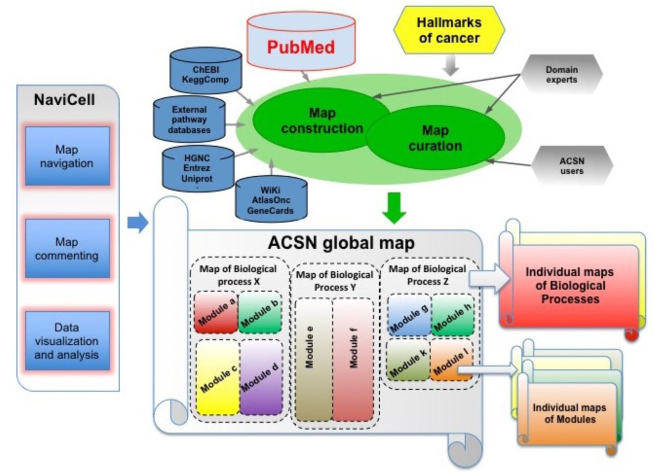 Application of Atlas of Cancer Signalling Network in pre