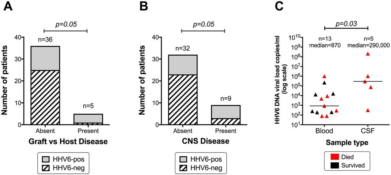 Human Herpes Virus 6 (HHV-6) - Pathogen or Passenger? A