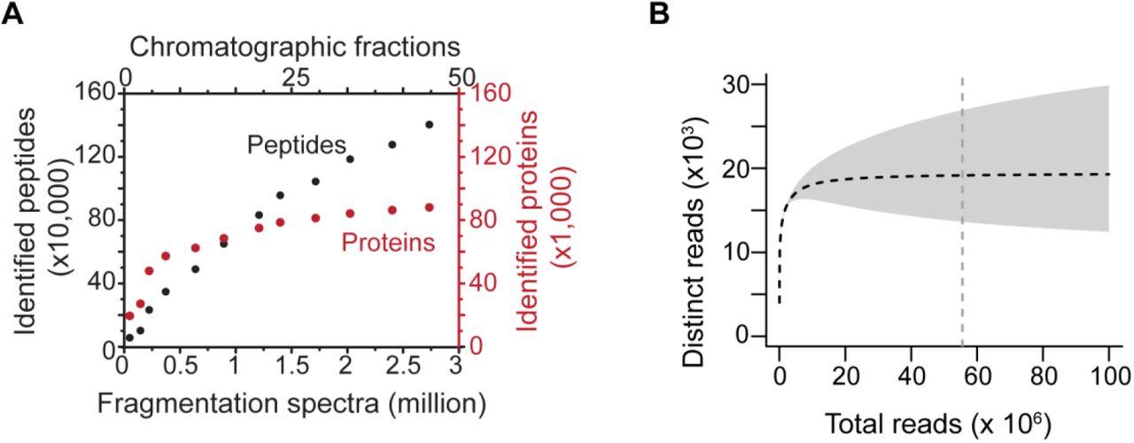 ProteomeGenerator: A framework for comprehensive proteomics