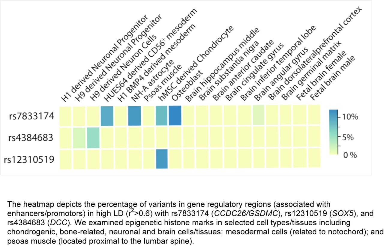 Genome-wide Meta-analysis of 158,000 Individuals of European