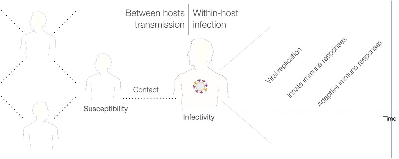 High-Resolution Epidemic Simulation Using Within-Host Infection and