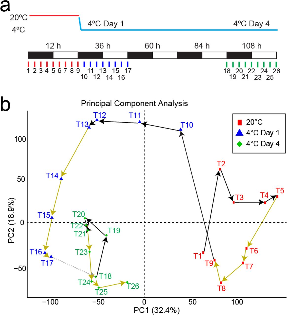 Rapid and dynamic alternative splicing impacts the Arabidopsis cold