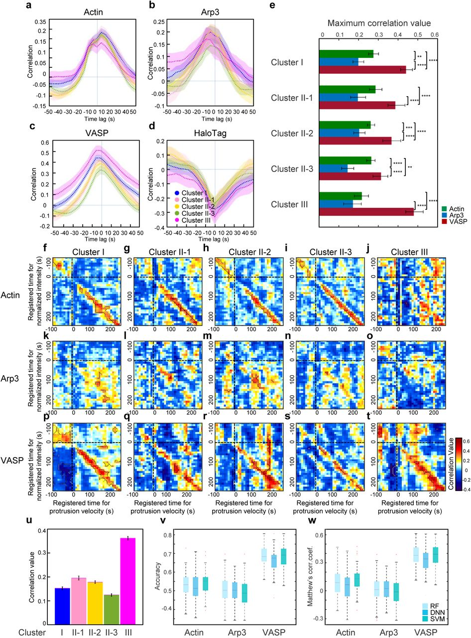 molecular factors underlying rate - HD946×1280