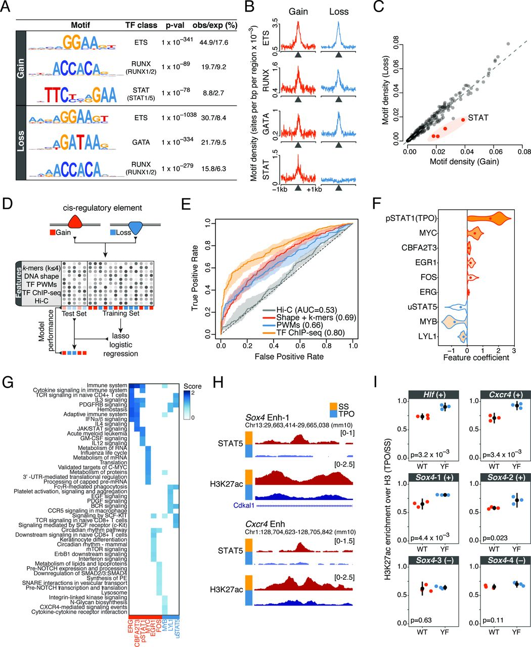 Thrombopoietin signaling to chromatin elicits rapid and