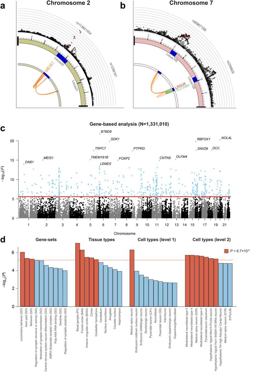 Genome-wide Analysis of Insomnia (N=1,331,010) Identifies