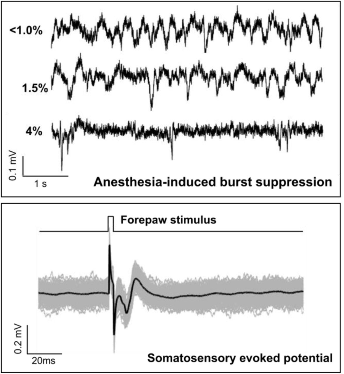 Adaptive and Wireless Recordings of Electrophysiological Signals