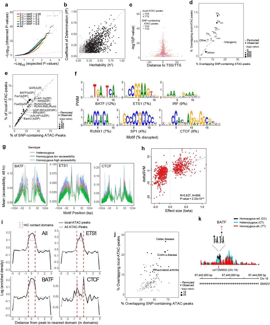 Genetic determinants of chromatin accessibility in T cell activation