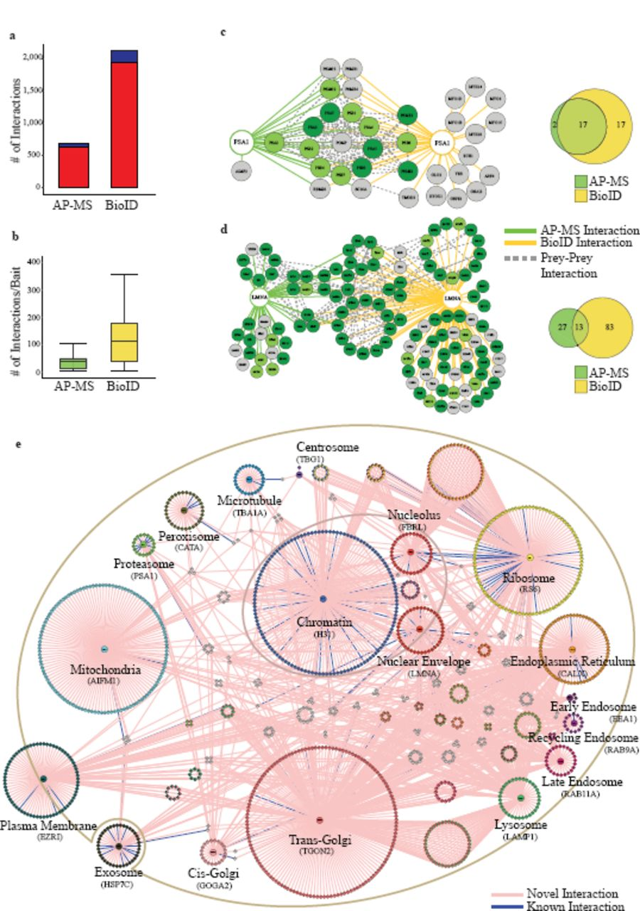 An integrated approach to comprehensively map the molecular