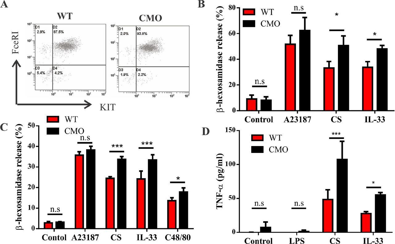 Aberrant mast cell activation promotes chronic recurrent