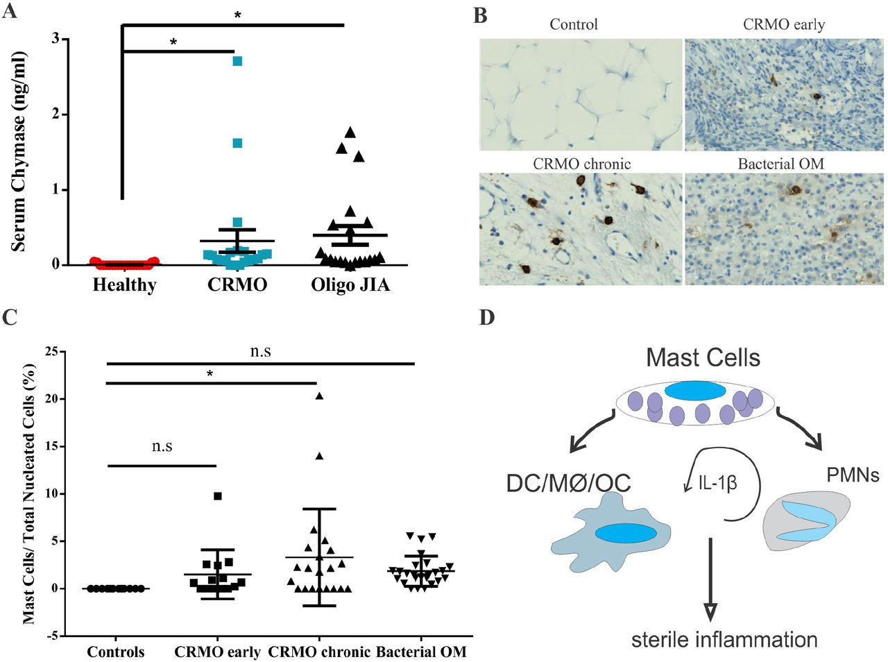 Aberrant mast cell activation promotes chronic recurrent multifocal