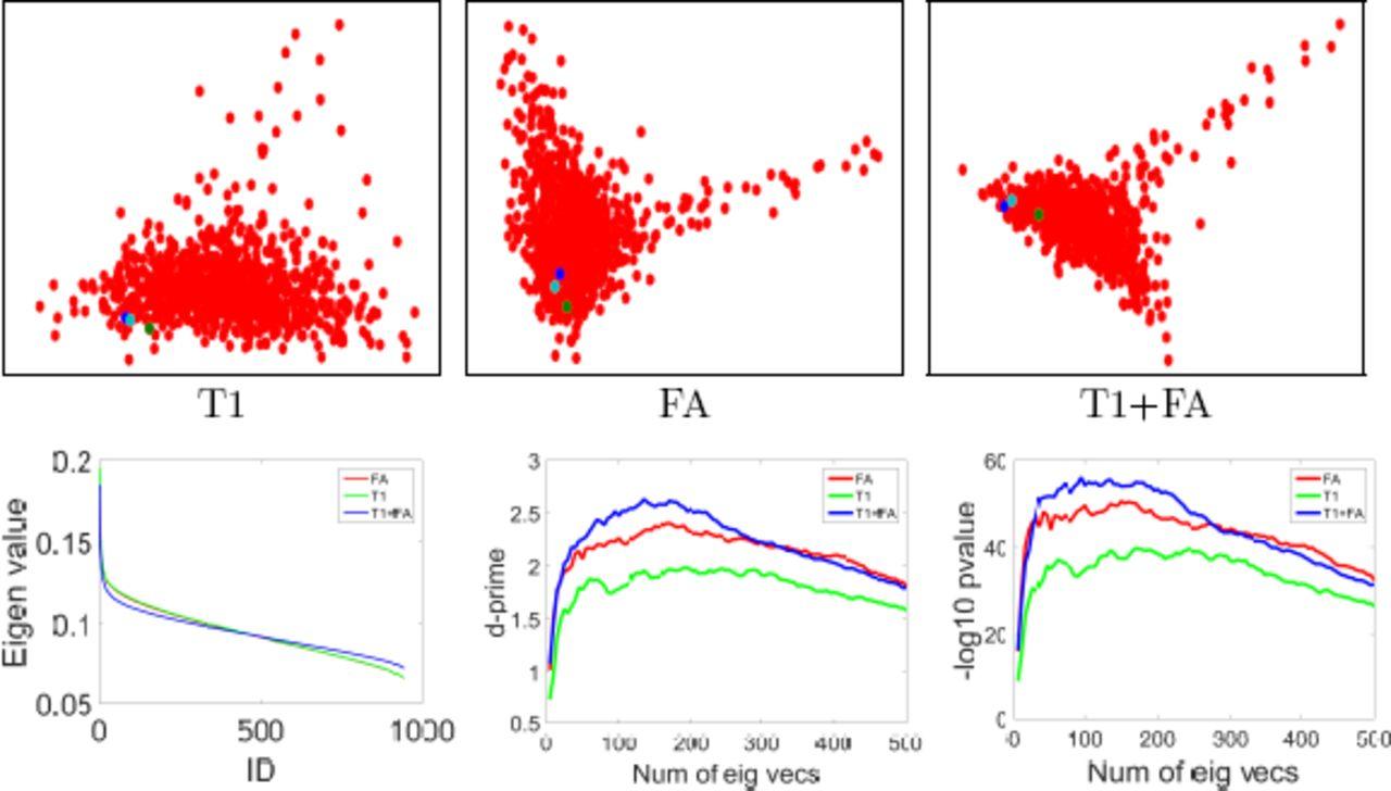 Multi-modal brain fingerprinting: a manifold approximation