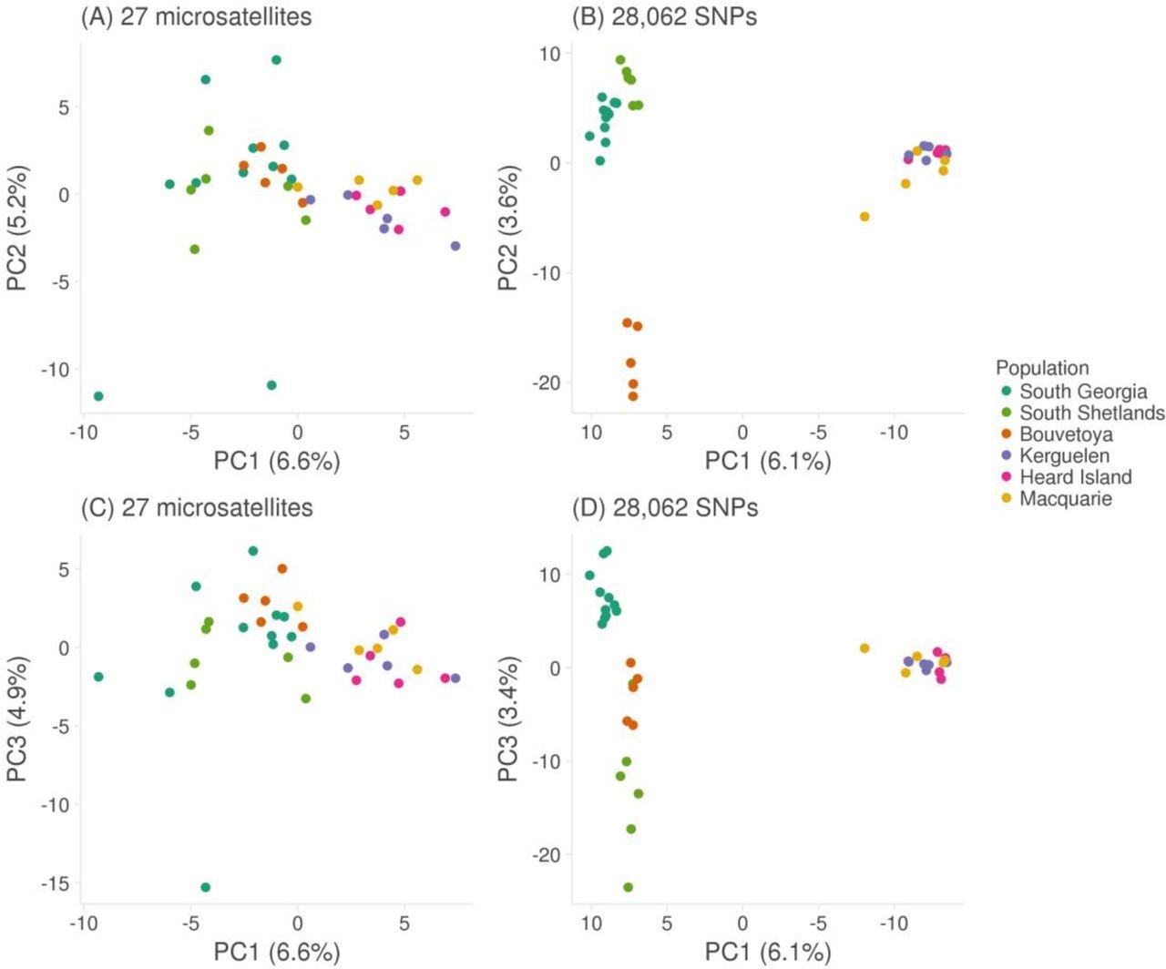 RAD sequencing and a hybrid Antarctic fur seal genome