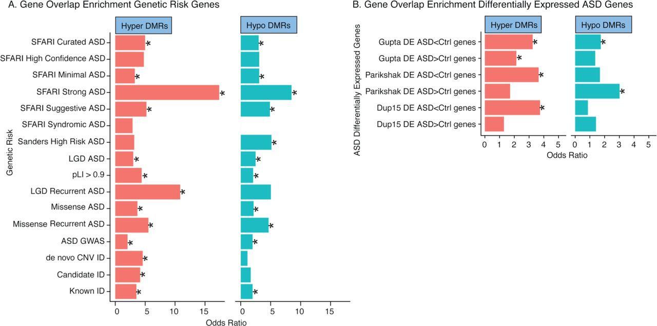 Epigenomic convergence of genetic and immune risk factors in