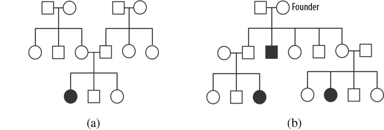 Lineage: Visualizing Multivariate Clinical Data in Genealogy Graphs