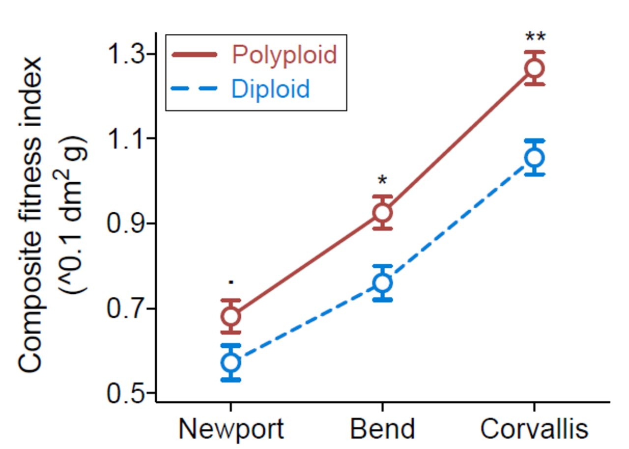 Both functional trait divergence and trait plasticity confer