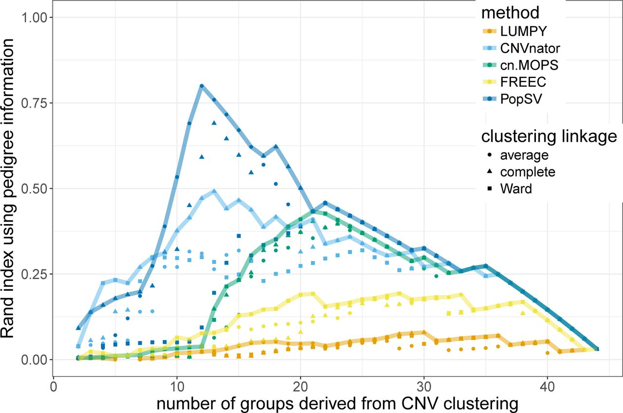 Global characterization of copy number variants in epilepsy