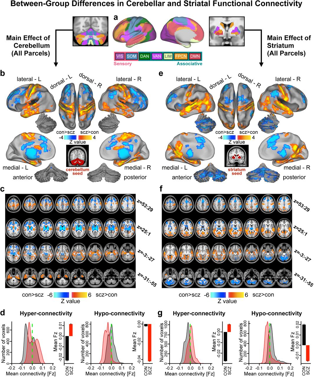 Schizophrenia Exhibits Bi-Directional Brain-Wide Alterations in